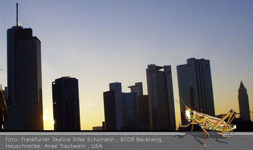 Skyline Frankfurt am Main und die US-Heuschrecke (Fotomontage)