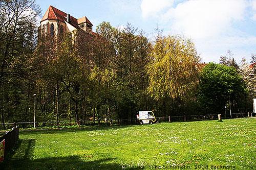 Stiftskirche von der Backnanger Bleichwiese