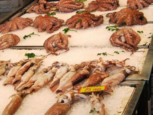 Kraken in der Fischhalle in Athen