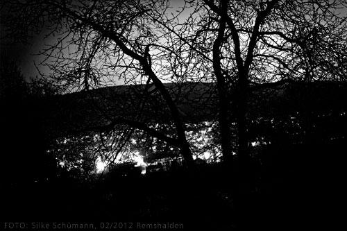 Morgengrauen - Blick durchs Gebüsch auf Remshalden