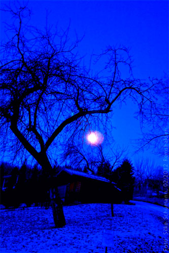 Wintervollmond